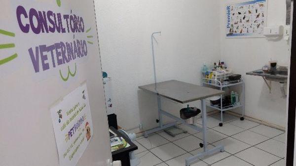 Consultório Veterinário