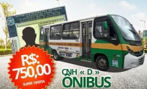 Adição de Categoria D Ônibus